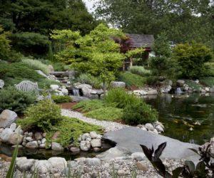 Koi Pond, Koi Ponds, Koi Pond Design Western MA, Koi Pond Design Longmeadow MA, Koi Pond Design Wilbraham MA, Landscape Architect Western Massachusetts