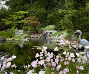 Koi Ponds, Koi Pond, Water Feature, Landscape Architecture, Landscape Design, Koi Pond Design, Landscape Architect