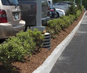 Balise Auto, Commercial Landscaping, Commercial Landscape Architecture Western MA, Commercial Landscaping Western MA, Commercial Landscaping Springfield MA