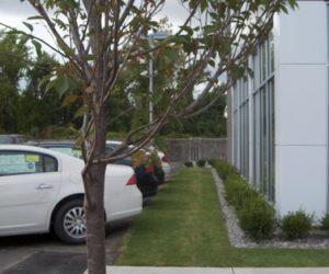 Balise Auto, Commercial Landscape Design, Commercial Landscape Architecture Western MA, Commercial Landscaping Springfield MA, Commercial Landscaping Design Western Massachusetts