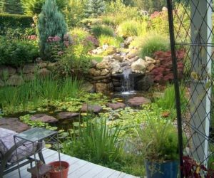 Koi Pond, Koi Ponds, Koi Pond Design, Koi Pond Installation, Landscape Architect, Landscape Designer
