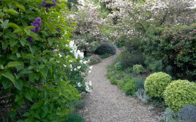 large garden, natural garden, garden design, landscape architecture Western MA, landscape architect and construction, Stephen A Roberts