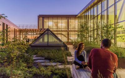 Rooftop garden, rooftop landscape design, landscape architect Western MA, landscape construction, rooftop garden style
